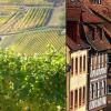 OBERNAI «Route des Vins»