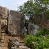 SRI LANKA «l'île aux joyaux»