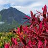 COSTA RICA «paradis vert»