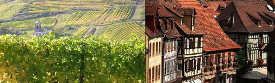 """OBERNAI """"Route des Vins"""""""