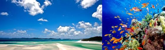 Plages et îles de rêve d' AUSTRALIE