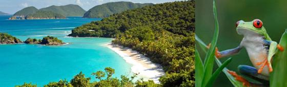 """COSTA RICA """"Au volant"""""""