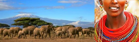 "KENYA ""Un safari, une expérience"""