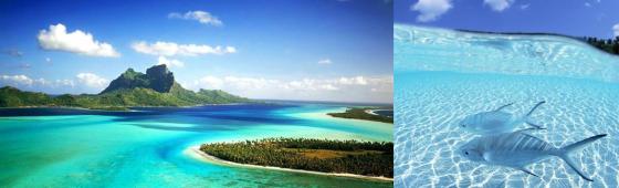 Plages de rêve aux MALDIVES