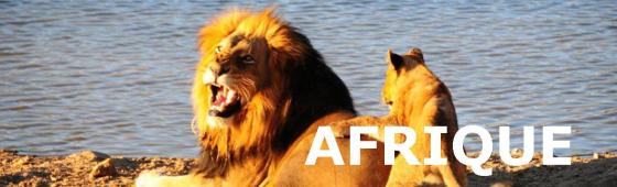 AUTOTOURS EN AFRIQUE