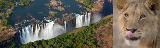 ZIMBABWE & BOTSWANA