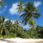 Seychelles - Ile de Mahé - Plage de Takamaka