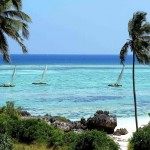Zanzibar - Ile de Unguja