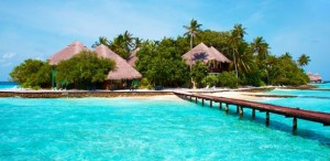 Maldives Compo 1