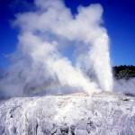 Nouvelle Zélande - Whakarewarewa - Geysers Pohutu
