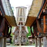 Célèbes - Village de Palawa