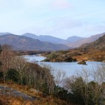 Park of Killarney - Ring of Kerry