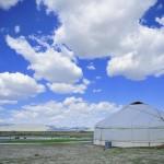 Mongolie -Plaine du Lac Khövsgöl