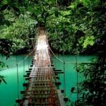 Costa Rica - Monteverde - Pont suspendu