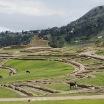 Equateur - Forteresse Inca d'Ingapirca