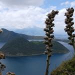 Equateur - Laguna de Cuicocha