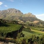 Afrique du Sud - Région de Franschoek - Route des Vins