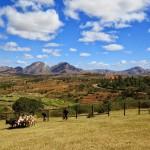 Madagascar - Ambalovoa