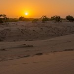 Sénégal - Désert de Lompul