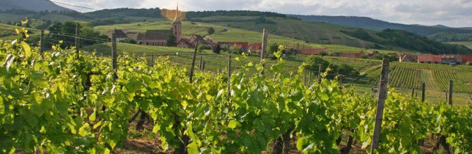 L'Alsace Autrement